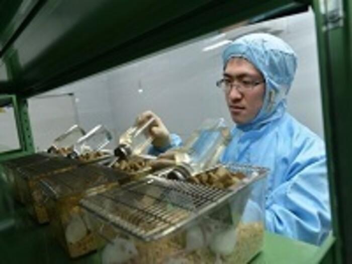 【動物試験】動物飼育や採血、解剖等を伴う試験の受託(医薬品・細菌試験可)の画像2
