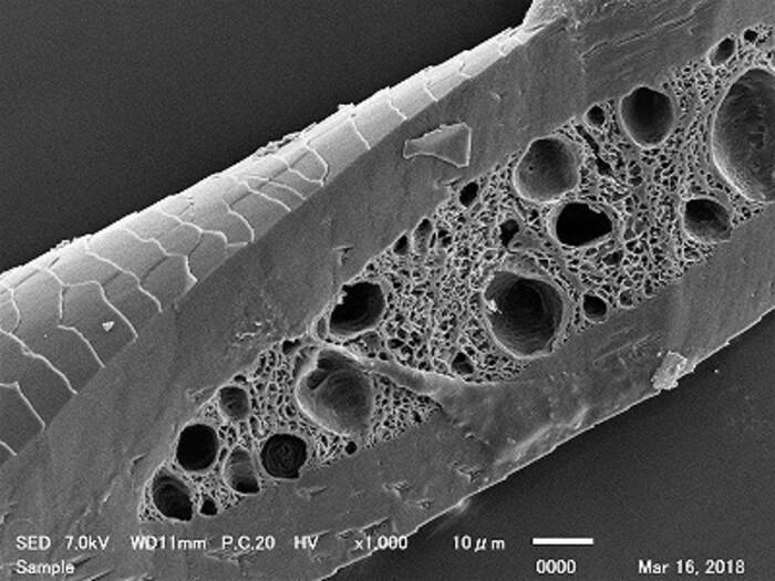 【異物・不良解析】走査電子顕微鏡(SEM-EDS)による表面形状観察・元素マッピング解析の画像2